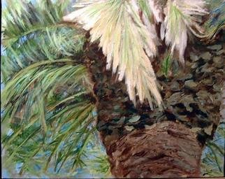 Roz Zinns, 'Palm Tree 1', 2003, original Painting Acrylic, 20 x 16  x 1 inches. Artwork description: 3495 Close- up of palm tree, looking up to where the birds were nesting, but they hid their nests well. 16 ...