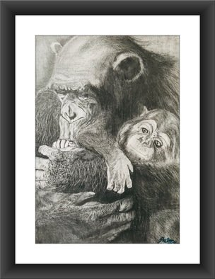 Shelton Barnes; Apes, 2020, Original Drawing Graphite, 11.7 x 16.5 inches. Artwork description: 241 Mother Ape with her baby, done on A3 size paper using graphite.  Sold without frame. ...