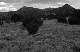 Susan Brannon; Cerillos New Mexico, 2012, Original Photography Black and White, 11 x 14 inches. Artwork description: 241  New Mexico, desert, Cerillos, photography, susan brannon, landscape, black and White, Black & white, sky, pinion, trees, sand, bushes, clouds           ...
