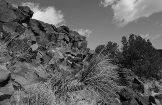 Susan Brannon; Santa Fe Petroglyphs, 2012, Original Photography Black and White, 11 x 14 inches. Artwork description: 241      Petroglyphs, Santa Fe, New Mexico, desert, Indian Art, bushes, photography, susan brannon, landscape, black and White, Black & white, sky, pueblo, home, desert, Native American, Indians, reservation, clouds, sunlight              ...