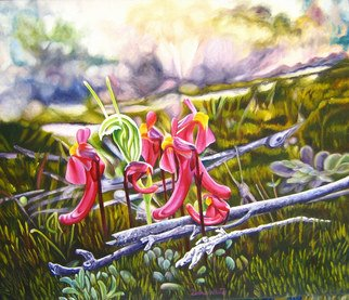 Delma White; Alien Landscape, 2010, Original Painting Oil, 50 x 42 cm. Artwork description: 241  Redcoats( Utricularia menziesii) and Snails( Pterostylis dilatata) grow on granite rocks Southof the Nullabor Plain in Australia. They are only about 3cm high and carnivorous....