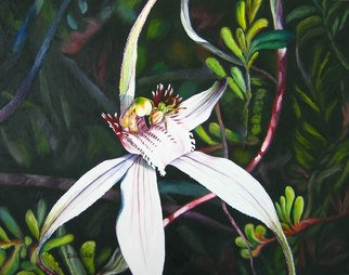 Delma White; Spiderlike, 2011, Original Painting Oil, 75 x 50 cm. Artwork description: 241  Caladenia longicauda- common spider orchid from the south west of Western Australia. The centre is only 1cm in size. Tiny crab spiders hide in flower and are well camouflaged, being the same colour as the flower.    ...