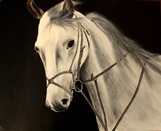 Piyush Pankaj; The wind rider, 2014, Original Painting Acrylic, 30 x 24 inches. Artwork description: 241  This Horse is made in Black and White and was hugely appreciated in the local art display in Houston. This is the original and exclusive piece made on canvas with 24x30 inch dimension.  ...