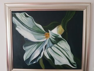 Sharon Dippenaar; White Flower, 2018, Original Painting Oil, 60 x 40 cm. Artwork description: 241 Oil On Canvas By Sharon4ArtsArtwork, Size:  24 x 16   60 cm x 40 cm  Title: White FlowerThe is a 100  hand painted piece by Sharon using Oils of a beautiful white flower. This Painting is Frames with a lovely Gold Frame.Each painting is unique.  ...