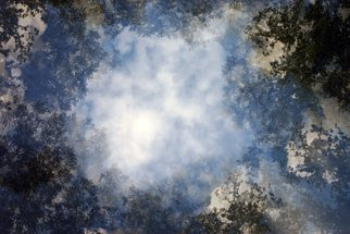 Shelley Catlin; 8 Trees, 2014, Original Photography Digital, 40 x 50 inches. Artwork description: 241    Trees, clouds, multiple exposure, blue sky ...