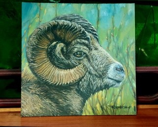Vector Convert; The Wild Head, 2020, Original Painting Oil, 12 x 12 inches. Artwork description: 241 The Wild Head- Sheep are fairly small compared to other ungulates  in most species, adults weigh less than 100 kg  220 lb . Males are usually heavier than females by a significant amount. Wild sheep are mostly found in hilly or mountainous habitats. ...