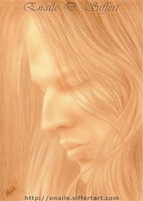 Artist: Enaile D. Siffert's, title: Portrait of David Gilmour, 2009, Drawing Pencil