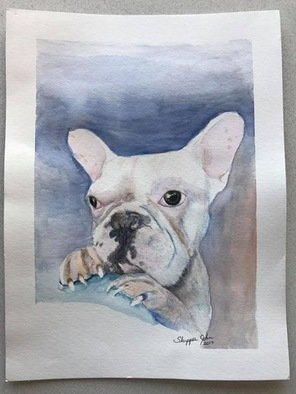 John Rollinson; snitch, 2017, Original Watercolor, 11 x 16 inches. Artwork description: 241 Portrait of French Bulldog...