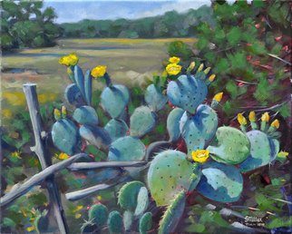 Steve Miller; Cactus Spring, 2010, Original Painting Oil, 20 x 16 inches. Artwork description: 241  Western cactus hill country texas prickly pear blossom ranch landscape ...