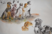 Artist: Debbi Chan's, title: dogs dogs dogs album, 2014, Artistic Book