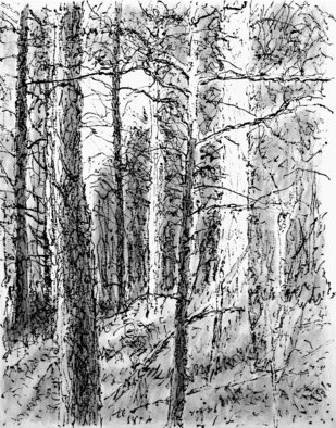 Keith Thrash; Goat Mountain, 1998, Original Printmaking Lithography, 9 x 12 inches. Artwork description: 241  Barbizon ( Harpignies) influenced, wooded hilltop west of Demopolis. ...