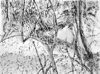 Keith Thrash; Tangled Creek Bank, 1998, Original Printmaking Lithography, 12 x 9 inches. Artwork description: 241  Ink wash over print. ...