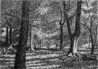 Keith Thrash; Trees In Central Park, 1987, Original Drawing Pen, 4 x 3 inches. Artwork description: 241  Rapidograph ink drawing. ...