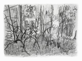 Keith Thrash; Woods, 1998, Original Drawing Pencil, 6 x 4 inches. Artwork description: 241  Pencil drawing of a wooded hilltop. ...