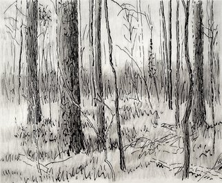 Keith Thrash; Woods In Spring, 1998, Original Printmaking Lithography, 9 x 9 inches. Artwork description: 241  Ink wash over print. ...