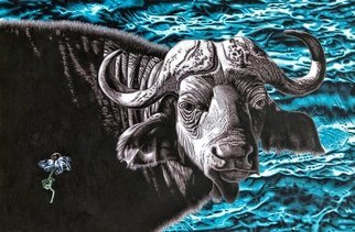 Stephen Hall; Fragile, 2020, Original Painting Acrylic, 4.8 x 3.2 inches. Artwork description: 241 In this painting the first impression is of the magnificent water buffalo, fragile Of course, with the global threat of rising sea levels and droughts due to climate change, all life on earth is fragile not just the wilting daisy depicted on the left....