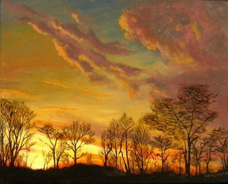 Fred Paddock; Tree Line Fire, 2006, Original Painting Acrylic, 20 x 16 inches. Artwork description: 241  Tree line Fire is a study of early morning light affected by varied cloud forms and the defused light caused by winter branches. ...