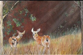 Terri Flowers, Lil Deer in Sun, 2007, Original Painting Acrylic,    inches