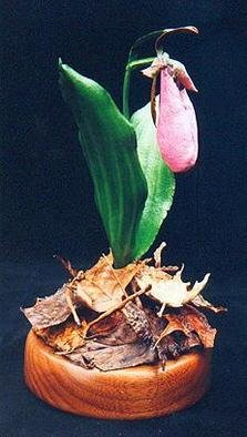 Teresa Turner; Pink Lady Slipper Orchid, 2003, Original Sculpture Other, 4 x 6 inches. Artwork description: 241 This sculpture depicts a pink lady slipper orchid ( Cypripedium acaule) . The medium is acrylics on sculpted leather. ...