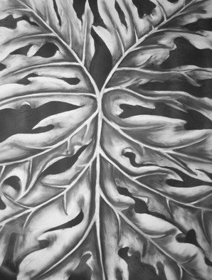 Teri Mcgee; Leaf, 2011, Original Drawing Charcoal, 18 x 20 inches.