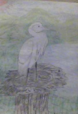 Themis Koutras; Bird Nesting, 2019, Original Drawing Pencil, 8 x 12 inches. Artwork description: 241 This is a print sold by e mail with these prints you can print copies in A 4 paper on your computer you can even save them and take it to a store to make bigger copies like posters so on or do it yourself if you ...
