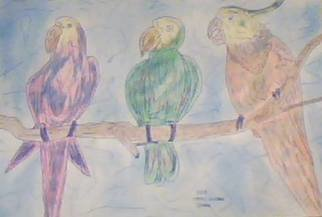 Themis Koutras; Parrots, 2019, Original Drawing Pencil, 12 x 8 inches. Artwork description: 241 i sell prints by e mail at 50 each welcome to my art studioThese are art done in computer art sold in prints over the net by e mail at a cheep price all for you. ...