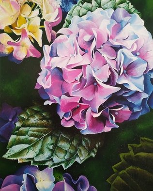 Krisztina T.Molnár; Hydrangea, 2019, Original Painting Acrylic, 80 x 100 cm. Artwork description: 241 Looking at the multitude of wonderful petals, one is lost in the same way as in his thoughts before enlightenment. This is how the Chinese consider this, associating this beautiful plant with light and clairvoyance. ...