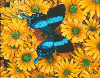 Tylor Adair; In Blue, 2016, Original Painting Acrylic, 11 x 14 inches. Artwork description: 241 Nature has its way of showing us immense beauty. This piece displays a lovely contrast between the flowers and the butterfly. The wings and its ornate detail, enhance the focal point, bring it closer to the viewer. This leave a presence ofserenity and comfort. ...