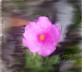 Jose Carvalho; PaperFlower, 2014, Original Digital Drawing, 8.5 x 11 inches. Artwork description: 241  Pink paper flower     ...