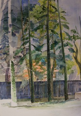 Walter King; Beccas Backyard, 2019, Original Watercolor, 15 x 21 inches. Artwork description: 241 Treeline at the end of my Step daughters back yard in Wash DC. ...
