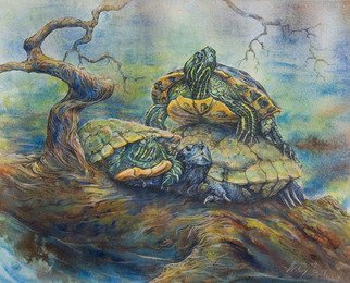 Deborah Wilson; Higher Perspective, 2014, Original Watercolor, 16 x 14 inches. Artwork description: 241 Turtles on a log in a river.  Ozarks   water turtle   river scene...