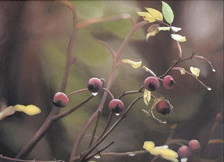 Peter Winberg; Rose Hip, 2003, Original Painting Oil, 35 x 27 cm. Artwork description: 241 Motif from photograph, taken by Stefan Axelsson. Painted in oil on canvas board....