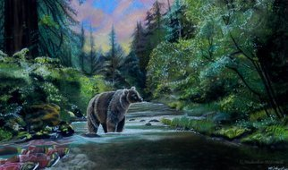 Michaeline Mcdonald; bear sunrise, 2013, Original Pastel, 30 x 18 inches. Artwork description: 241 Original pastel painting of a bear standing in a river waiting for the salmon to swim up stream. A pink and yellow sunrise is behind the redwood forest scene. ...