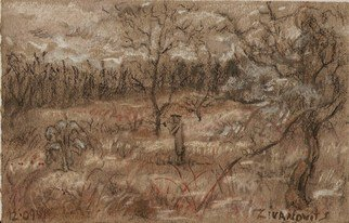 Dana Zivanovits; WINTER FIELD, 2009, Original Pastel, 7 x 4.5 inches. Artwork description: 241      This pastel was done on all rag acid free toned pastel paper.     ...