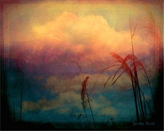 Zunilda Sarete; Brooklyn Sky I, 2010, Original Photography Other, 8 x 10 inches. Artwork description: 241      Landscape photomanipulation using texture.     ...