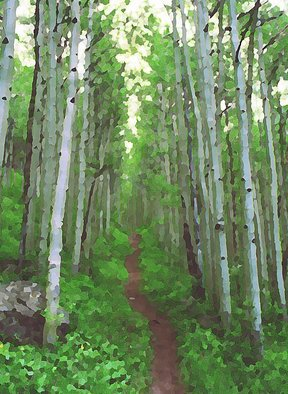 Steve Tohari; Aspen Trail 1, 2018, Original Photography Color, 16 x 20 inches. Artwork description: 241 Aspen Trail above Vail, Colorado. Early Summer. Photograph edited for painted, abstract effect. Aspen trees, Vail, Colorado, trail, forest, nature, hike...