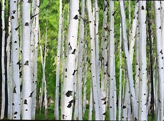 Steve Tohari; Aspen Tree Trunks, 2018, Original Photography Digital, 30 x 24 inches. Artwork description: 241 In a grove of Aspen trees, trunks crowd together in a visually compressed telephoto shot. The photograph was altered with digital tools to resemble a painted image. ...
