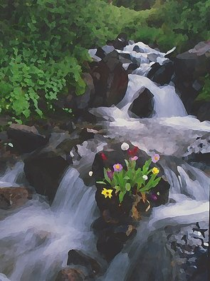 Steve Tohari; Bouquet 1, 2018, Original Photography Color, 16 x 20 inches. Artwork description: 241 Wildflowers, cascades above Montezuma, Colorado. Flowers grew naturally on rock. Colorado, wildflowers, stream, cascades, rushing water...