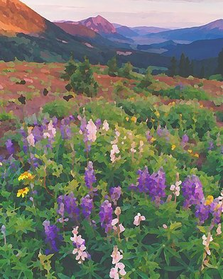 Steve Tohari; Wildflowers Crested Butte 1, 2018, Original Photography Color, 16 x 20 inches. Artwork description: 241 Lupine near Crested Butte, Colorado. Photograph edited for painted effect. Colorado, Crested Butte, wildflowers, Lupine...
