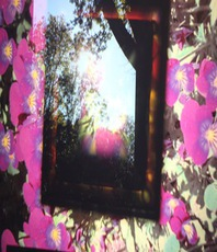 Artist: Anna Thurber, Artwork Title: Gateway To Life, 2015-05-27. Mixed Media, Psychedelic, $536