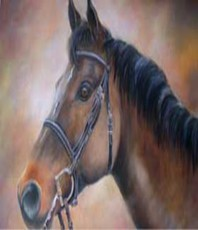 Artist: Valda Fitzpatrick, Artwork Title: Horse , 2015-08-25. Painting Oil, Animals, $2,100
