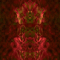 Artist: Lynda Lehmann, Artwork Title: Illumined Orchid Fantasy , 2015-01-24. Digital Art, Abstract, Request Price
