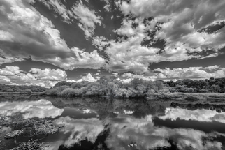 Artist: Jon Glaser, Artwork Title: Myakka Dream, 2015-08-26. Photography Black and White, Landscape, $2,625