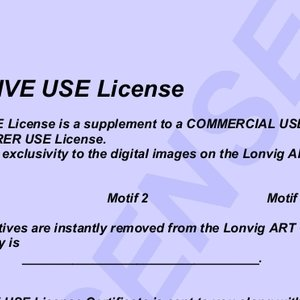 Asbjorn Lonvig, Exclusive Use License, undecided, $ 26,250