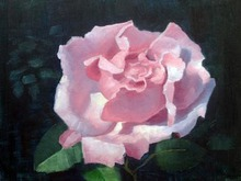 - artwork Pink_Rose-1349281580.jpg - 2012, Painting Oil, Still Life