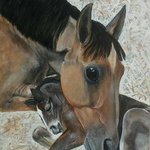 mare and colt By Althea E Jenkins