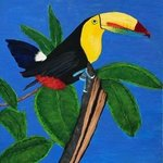toucan By Althea E Jenkins