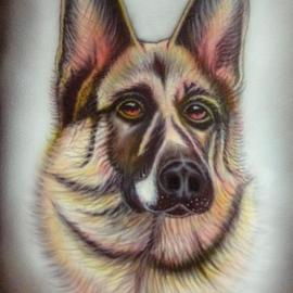 Can Yucel Artwork Alsatian after Helen Backhouse, 2006 Other, Animals