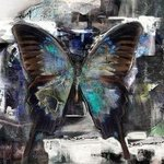 White Night Butterfly By Airton Sobreira