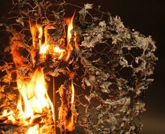 Angela Jenks: 'destruction', 2019 Color Photograph, Death. Artist Description: Sculpture of Lungs, Chicken Wire, Tissue Paper, Fire...
